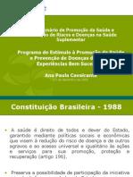 apresentaçãoAnaPaula DCNT