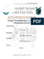 Grupo Nocardiformes y Familia Streptomycetaceae
