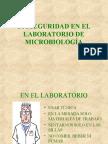 1Estructuras y morfología