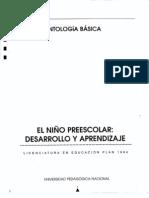 EL NIÑO PREESCOLAR DESARROLLO Y APRENDIZAJE AB