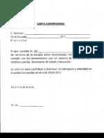 Carta compromiso cas