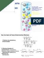 Cromatografia de Inter Cam Bio Ionico