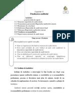 11 Finalizarea auditului