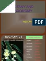 Botany and Taxonomy