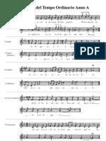 Proprium Missae 25.ma Dom del TO / A