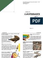 Caderno de Curios Ida Des - Carlos Henrique