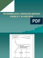 ion Cardiopulmonar Basica y Avanzada
