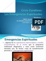 Crisis Curativas