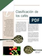 clasificacion coffee