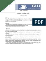Java Guia Consulta
