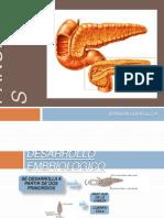 7 Pancreatitis - Zoraida Lema