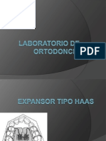 Lab Orto Haas