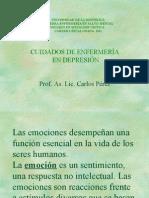 CUIDADOS_ENFER_DEPRESION_C_P_CH