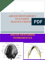 Arcos+Dentarios+y+Oclusión