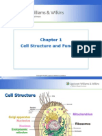 Chap 1 Cell and Tissue Function