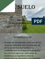 Expo Del Suelo
