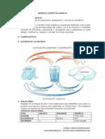 4. quimica cosmetica