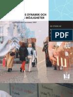 Segregation Ens Dynamik 2007-12-06-1.PDF++080401