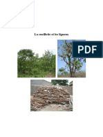 La cueillette et les ligneux, Villages des zones cotonière du Mali-Sud, gestion des ressources naturelles