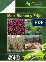 Actual Mapeo Maiz-Frijol CentroAmerica