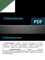 Colinesterase