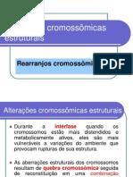 Questionario de biologia ALTERACOES CROMOSSOMICAS ESTRUTURAIS