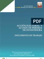 232 07 Accion Electoral y Perdida de Investidura