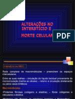 UNIDADE 3 - Alterações no interstício e Morte celular