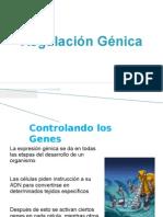 4) Regulacion Genica i Parcial III Per 2011 Fm