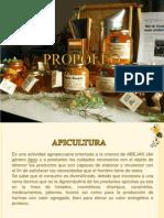 Expo de Abejas