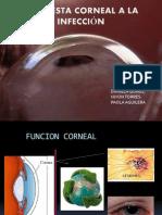 Respuesta Corneal a La Infeccion y a La Injuria..
