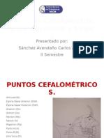Anlisis Cefalometrico de Burstone y Legan(RO)