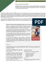 3 Desigualdade social permanencia e evolução no Brasil