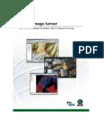 Arcgis Image Server