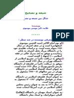 شيعه و تصحيح جدال بين شيعه و تشيع