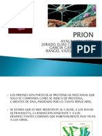 Expo Prion