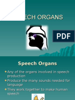 Mustaqim,M Shafiq Speech Organ