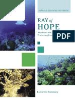 Ray of Hope - Executive Summary