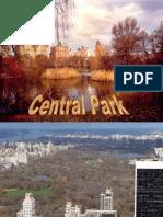 Central Park- NY- Outono- regi- T-