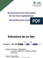 Inmunología y genètica linfocitos
