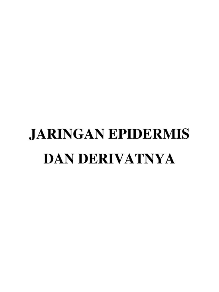 Jaringan Epidermis Dan Derivatnya Stomata N Trikoma
