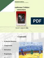 04-Estructura membrana