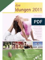 Yoga Vidya Ausbildungen2011