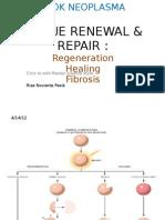 KP Tissue Renewal&Repair