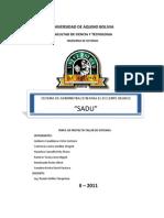 Perfil1 Proyecto SADU Final