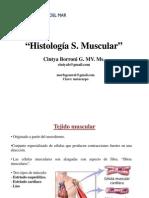 Histología S. Muscular