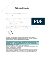 Calculo Vetorial I