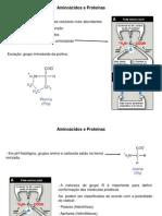bioquimica - Aminoácidos e Proteínas