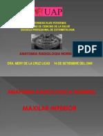 7.- Anatomia Mandibular