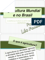 AGRICULTURA MUNDIAL E NO BRASIL